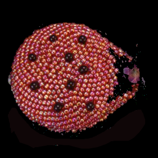 Ladybug pin
